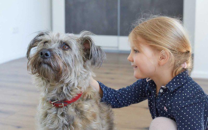 Lizzy (Hund)